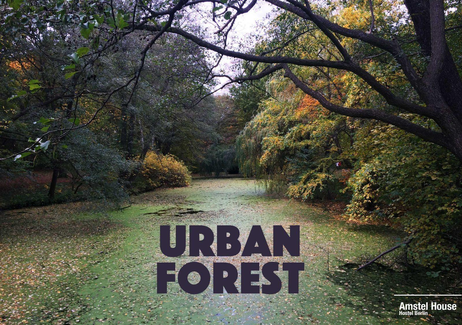 tiergarten urban forest